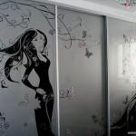 Двери для шкафа-купе - зеркало с рисунком.