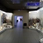 Музейные витрины из стекла и оргстекла.
