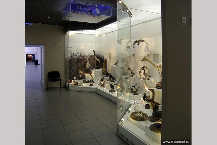 Перегородки стеклянные для витрин музея.